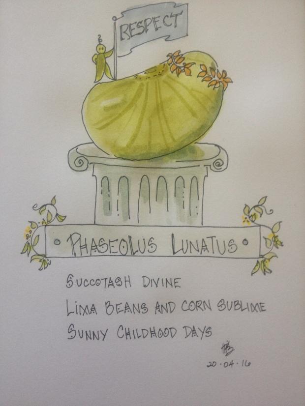 Phaseolus Lunatus